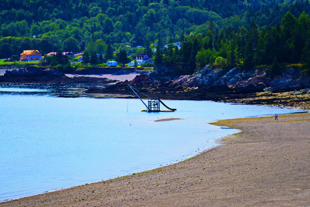 Stanley Beach and the Swimming Raft
