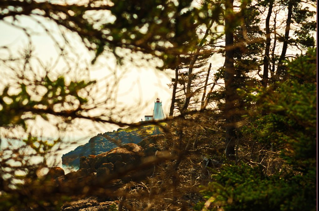 On the Trail to Swallow Tail Lighthouse